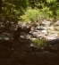 In my blog 'Runner in Ikaria' from 'Φτιάχνοντας μια Λίμνη στο Φαράγγι (1)' : ένα post (in Greek) για την κατασκευή από εθελοντές μια τεχνητής λίμνης στο φαράγγι της Χάλαρης στην Ικαρία