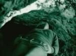 03 bushes-ikaria