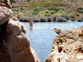 Ikaria in Images (3) slide0064_image127