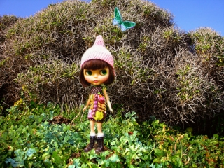 My Blythe doll is in Ikaria