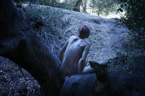 Radi forest Ikaria 2-2-2014
