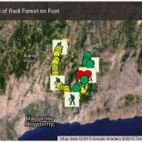 Ranti Forest on OPS Ikarias Google maps